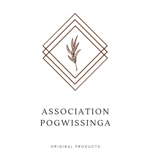 ASSOCIATION Pogwissinga du Koulpelogo
