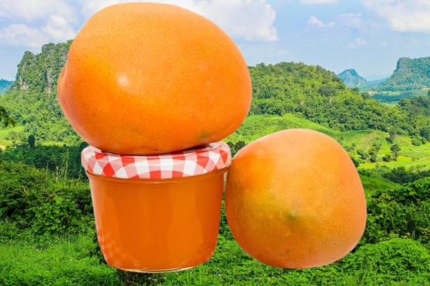 Mango_Marmelade_Somlarefruits-removebg-preview_3